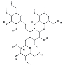 Starch Molecule