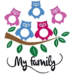 Owl Family Single