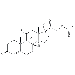 NEW: Cortisone Molecule